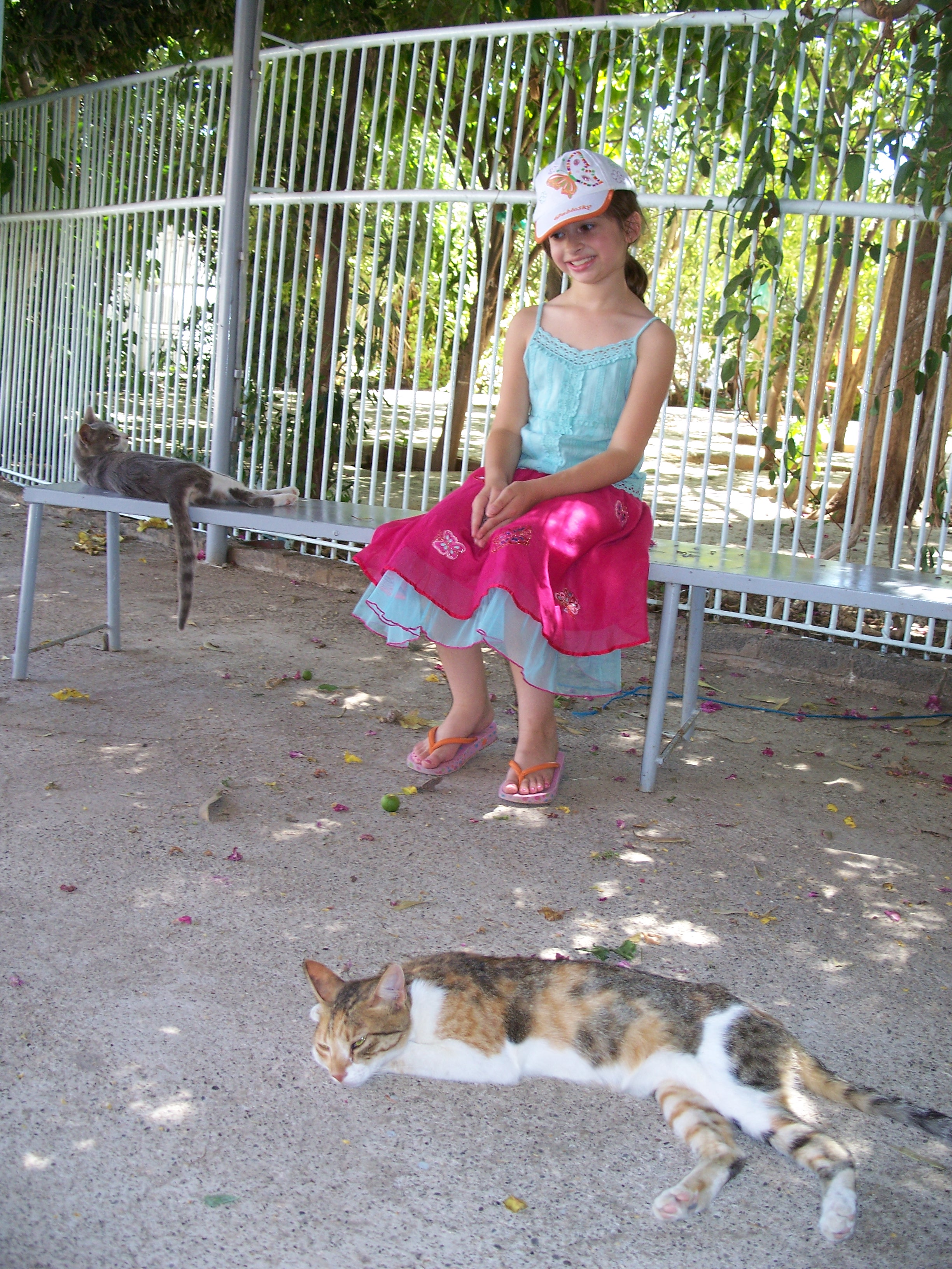 sophia-with-cats